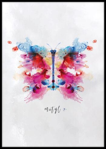 Plakat do sypialni z motywem motyla