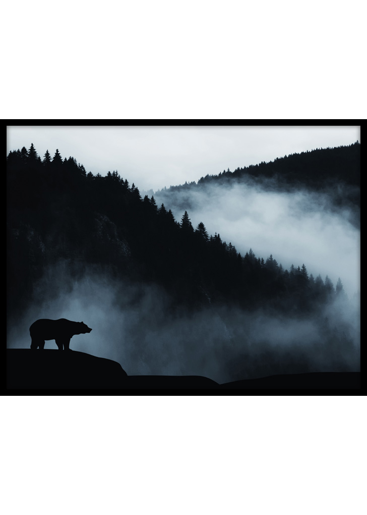 Plakat do sypialni przedstawiający niedźwiedzia