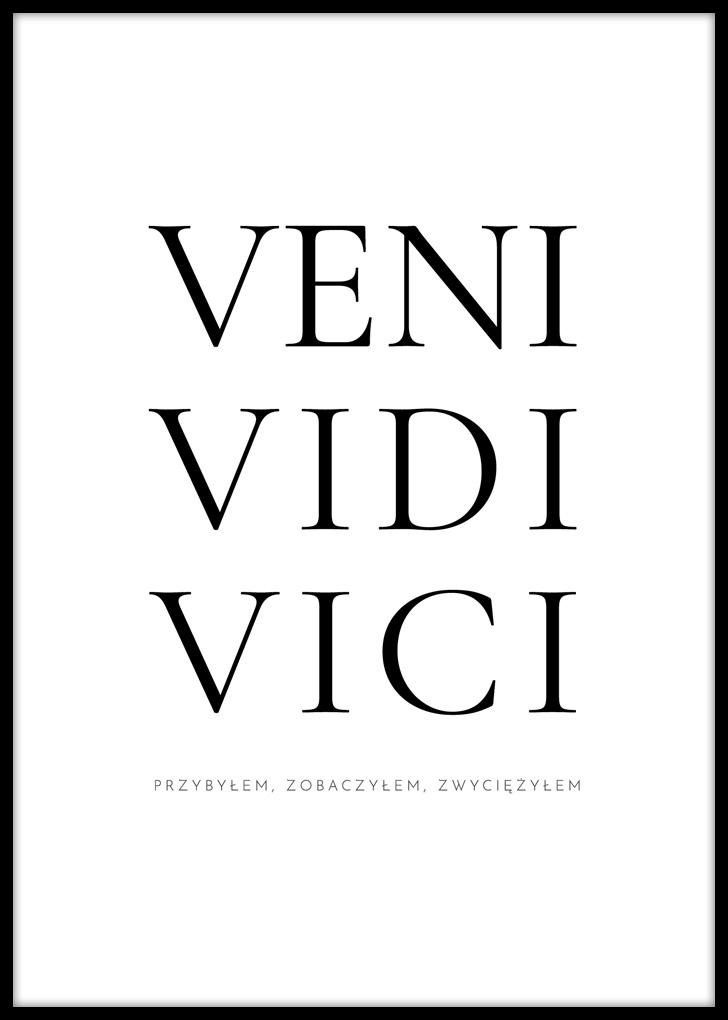 Plakat motywacyjny - Veni Vidi Vici
