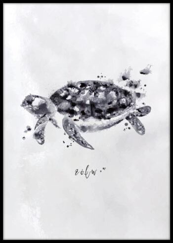 Żółw - plakat do sypialni